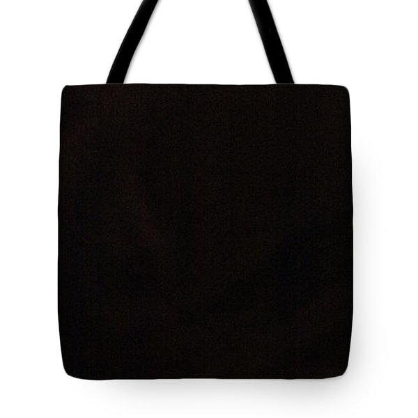 Tote Bag featuring the photograph Flamenco 42 by Catherine Sobredo