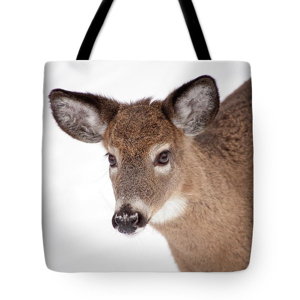 Gentle One Tote Bag