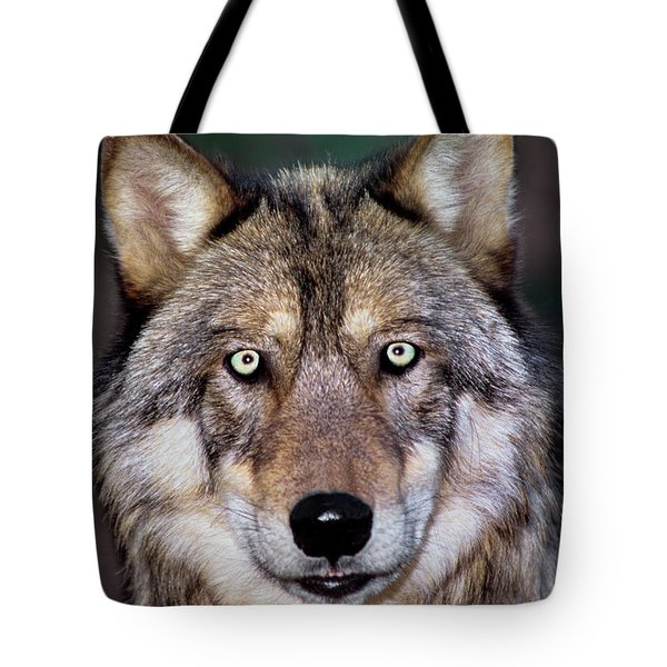 Gray Wolf Portrait Endangered Species Wildlife Rescue Tote Bag