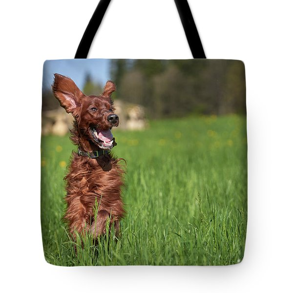 Happy Setter Tote Bag