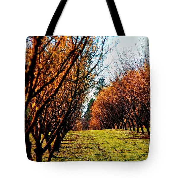 Tote Bag featuring the photograph Hazelnut Orchard 21578 by Jerry Sodorff