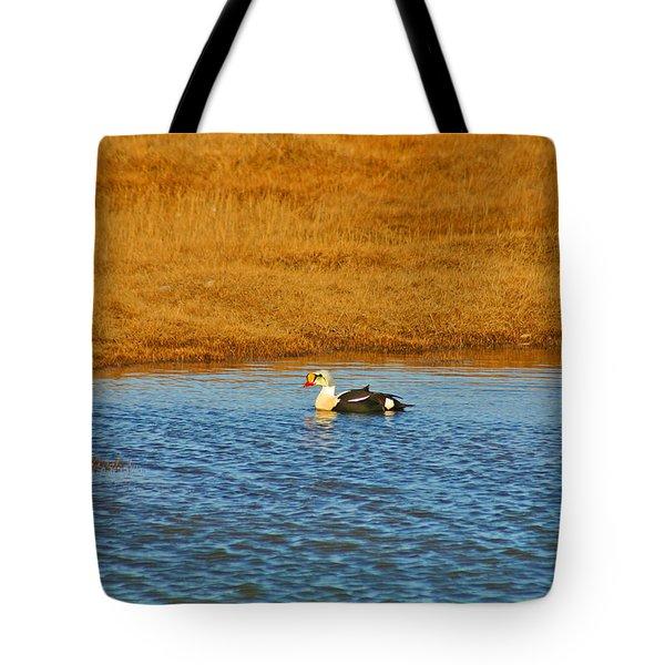 King Eider Tote Bag