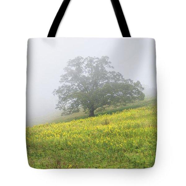 Lone Tree Hill - Blue Ridge Parkway Tote Bag