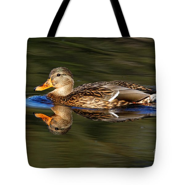 Tote Bag featuring the photograph Mallard Duck by Sue Harper