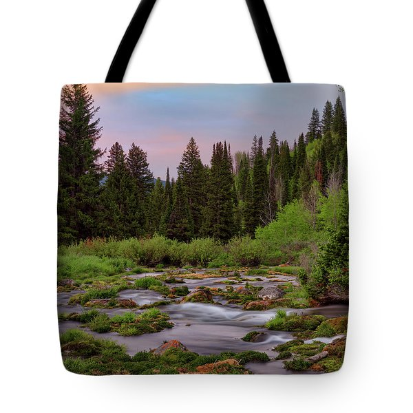 Tote Bag featuring the photograph Mountain Spring by Leland D Howard