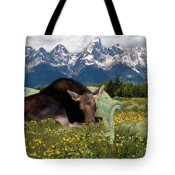 Nap Time In The Tetons Tote Bag