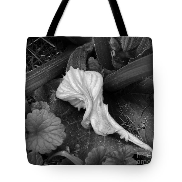 Tote Bag featuring the photograph New Life by Rosanne Licciardi