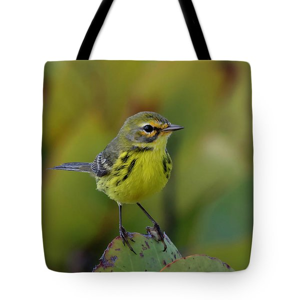 Tote Bag featuring the photograph Prairie Warbler by Thomas Kallmeyer