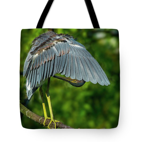 Preening Reddish Heron Tote Bag