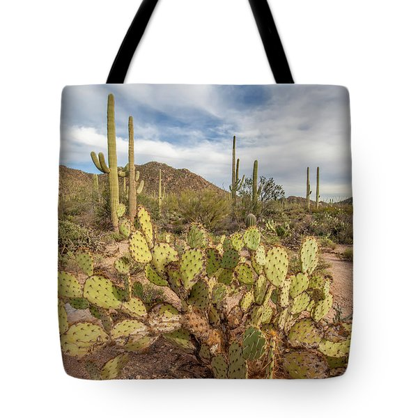 Tote Bag featuring the photograph Prickly Pear Patch In The Early Evening. by Lon Dittrick