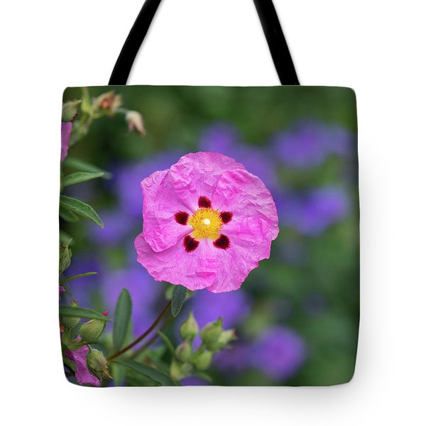 Tote Bag featuring the photograph Purple Flowered Rock Rose by Tim Gainey