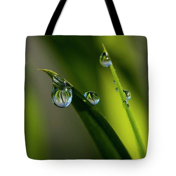 Rain Drops On Grass Tote Bag