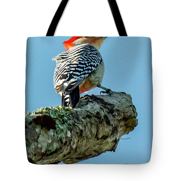 Tote Bag featuring the photograph Red-bellied Woodpecker by Michael D Miller