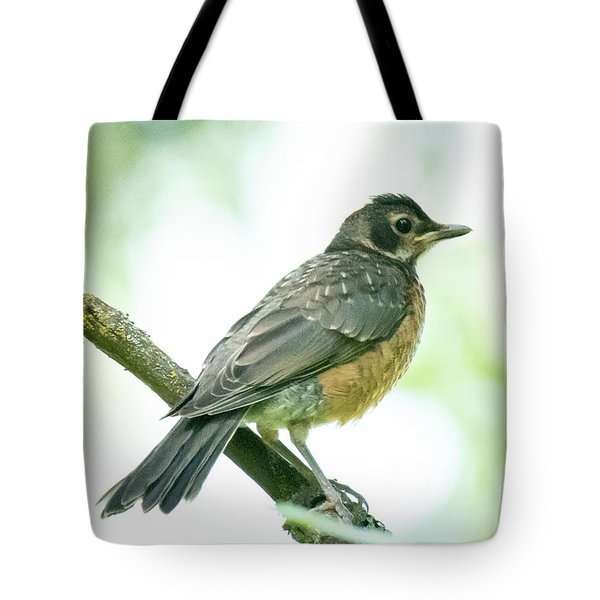Tote Bag featuring the photograph Robin by Michael D Miller