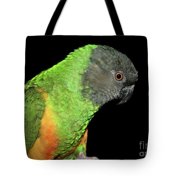 Senegal Parrot Tote Bag