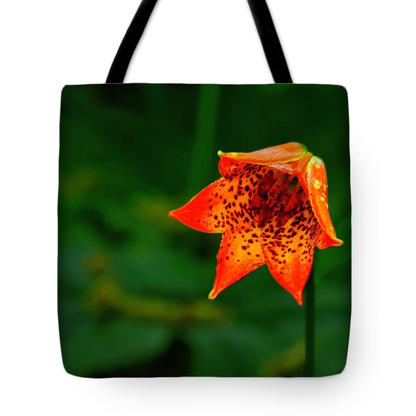 Tote Bag featuring the photograph Single Orange Grays Lily by Meta Gatschenberger