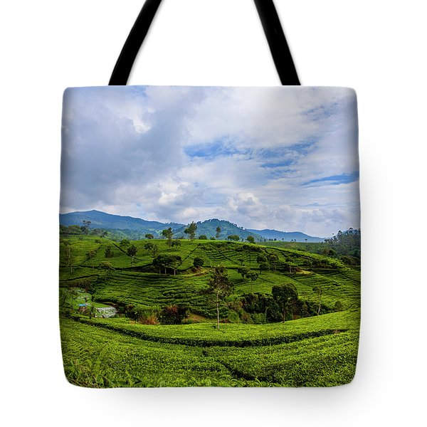 Tea Plantation Tote Bag