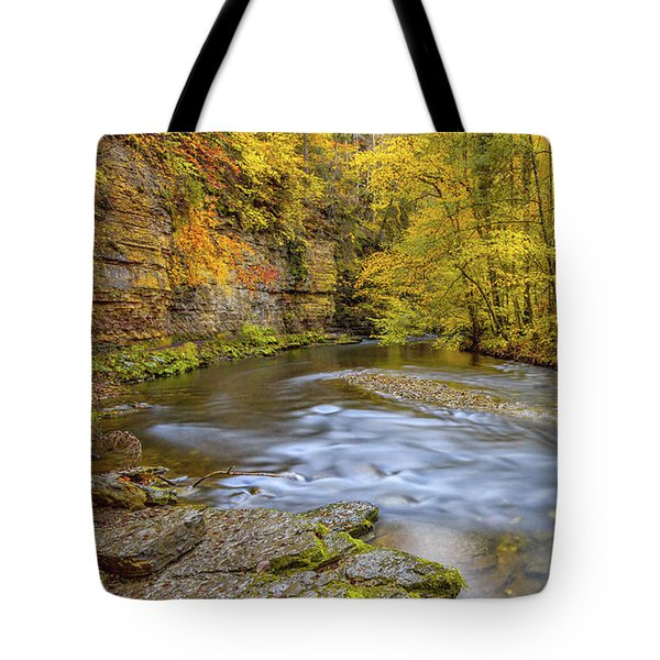 The Wutach Gorge Tote Bag