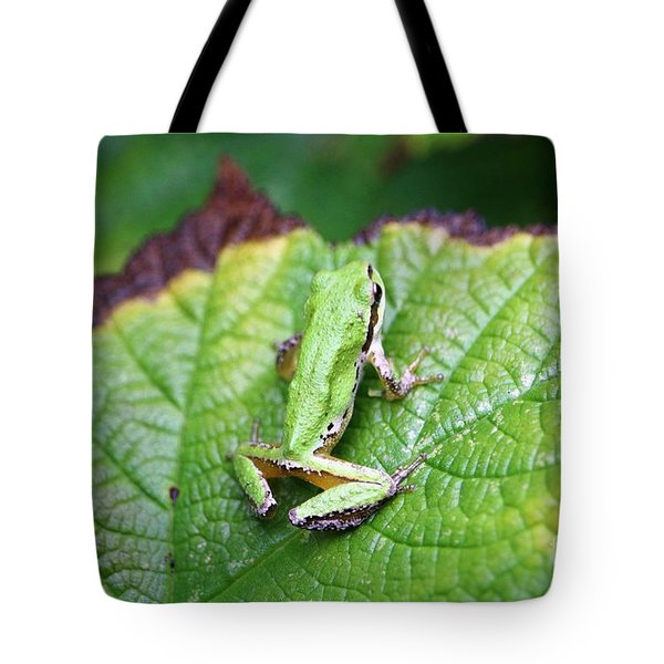 Tree Frog On Leaf Tote Bag