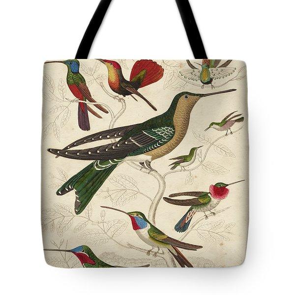 Trochilus, Hummingbirds Tote Bag