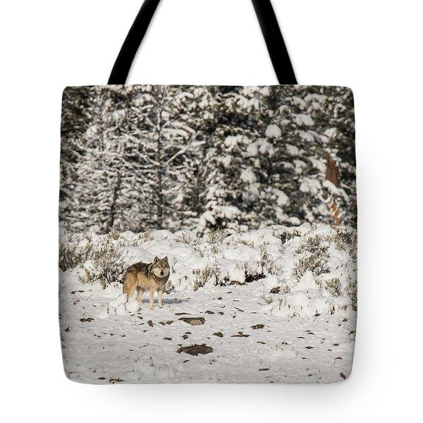 W20 Tote Bag