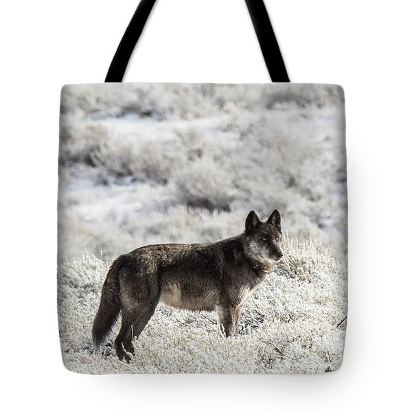 W23 Tote Bag