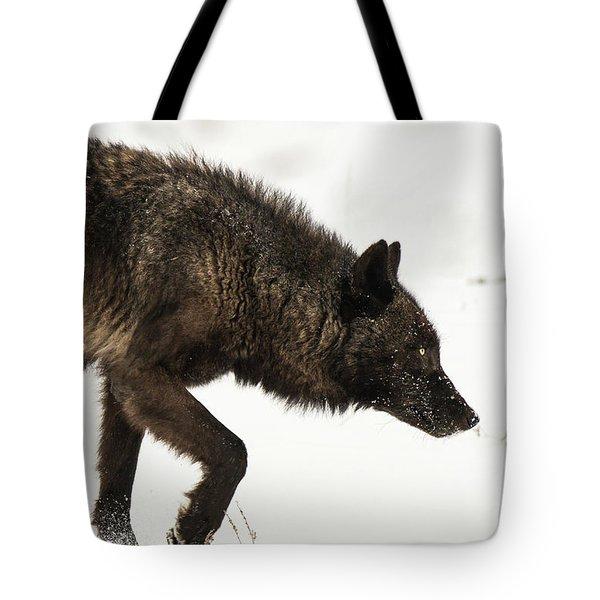 W46 Tote Bag