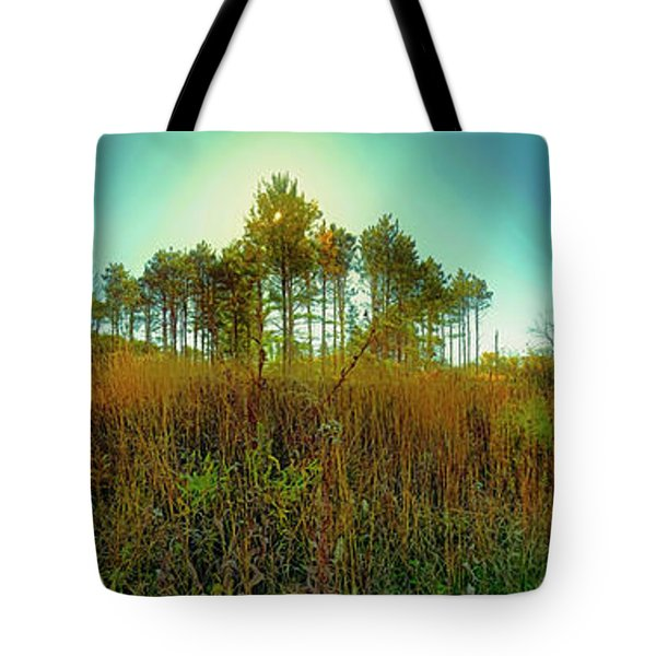 Tote Bag featuring the photograph Which Way To Go  by Tom Jelen