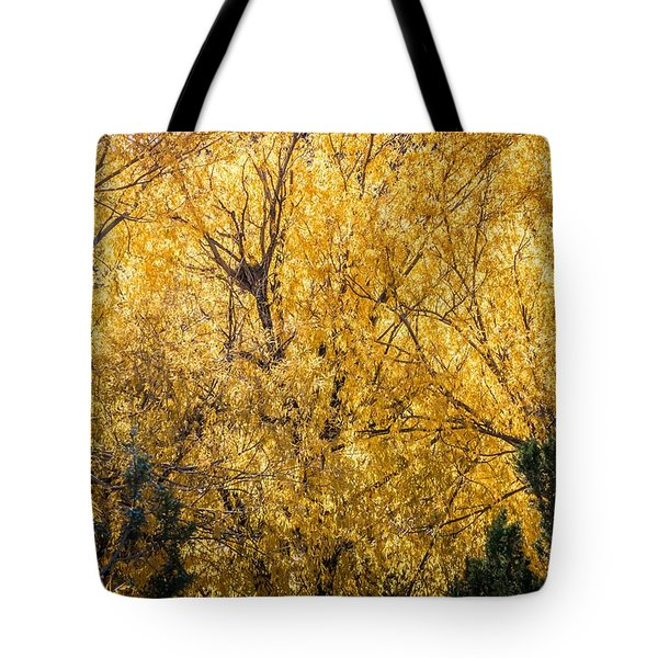 Tote Bag featuring the photograph Autumnal Park. Autumn Trees And Leaves. Fall by Alex Grichenko