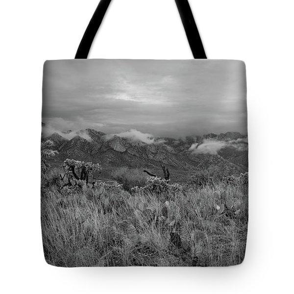 12-26-18 Snow Storm Tote Bag