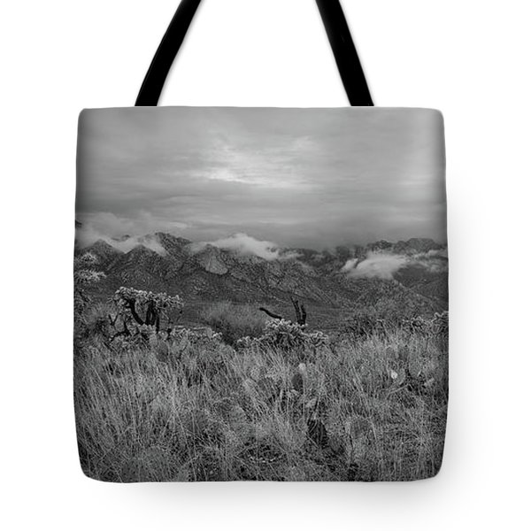 12-26-18 Snow Storm Tote Bag