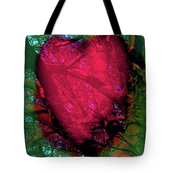 2-16-2009ab Tote Bag