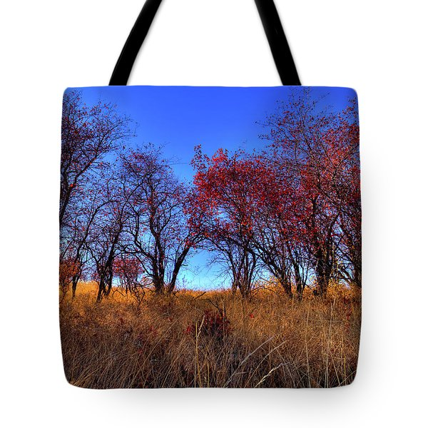 Tote Bag featuring the photograph Autumn Light by David Patterson