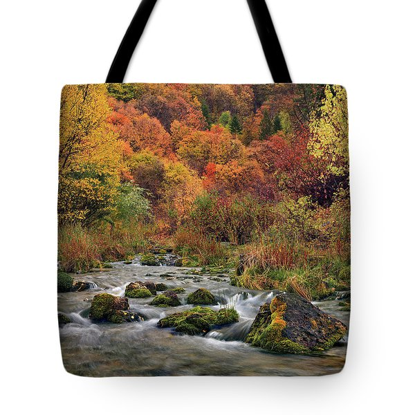 Tote Bag featuring the photograph Cub River Autumn by Leland D Howard