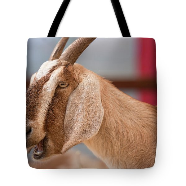 Tote Bag featuring the photograph Goat by Rob D Imagery