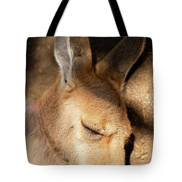 Tote Bag featuring the photograph Kangaroo Joey by Rob D Imagery