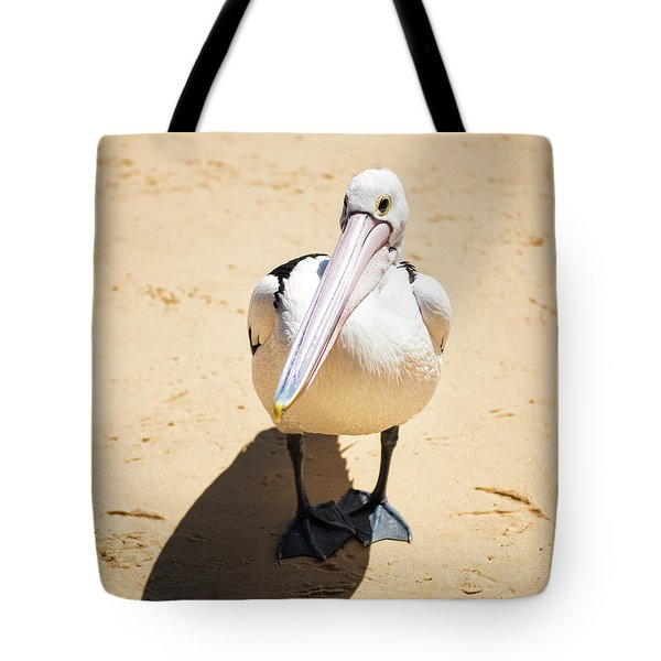 Tote Bag featuring the photograph Pelican During The Day by Rob D Imagery