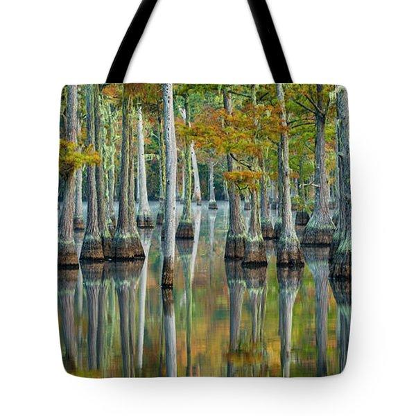 Reflection Of Bald Cypress Taxodium Tote Bag
