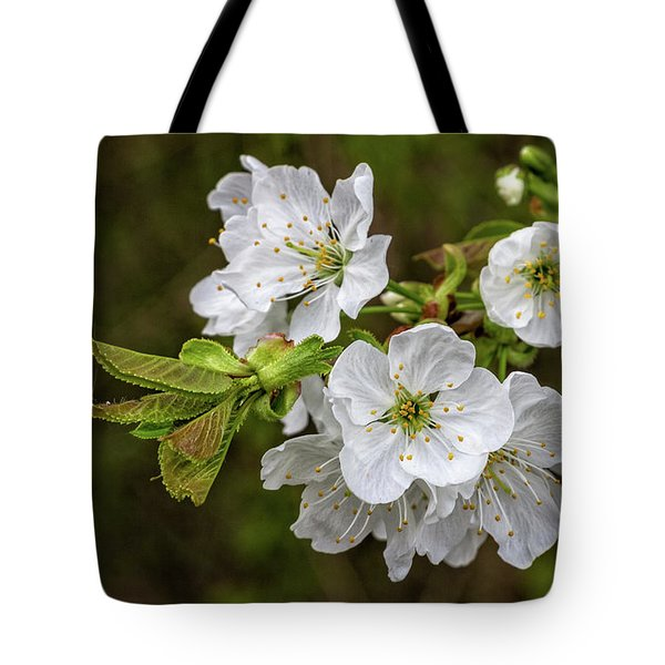 Tote Bag featuring the photograph Spring Is In The Air by Bernd Laeschke
