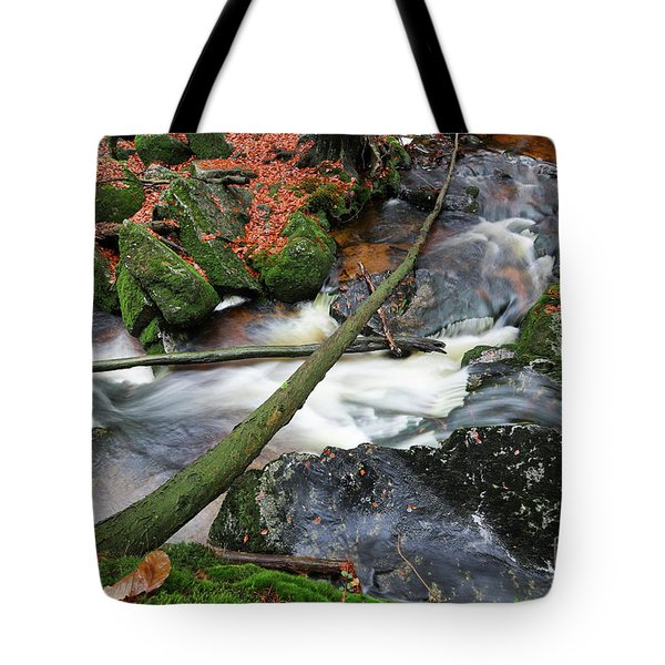 Stream In The Autumn Forest Tote Bag