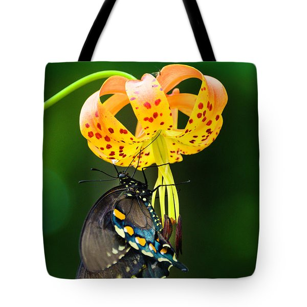 Swallowtail On Turks Cap Tote Bag