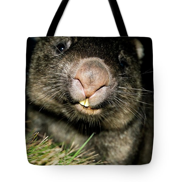 Tote Bag featuring the photograph Wombat At Night by Rob D Imagery