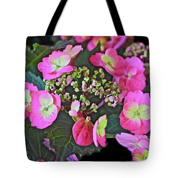 2019 June At The Gardens Tuff Stuff Hydrangea Tote Bag