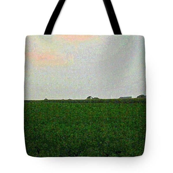 3-11-2009t Tote Bag