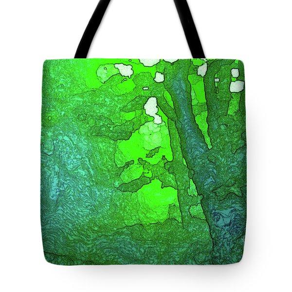 3-16-2009v Tote Bag