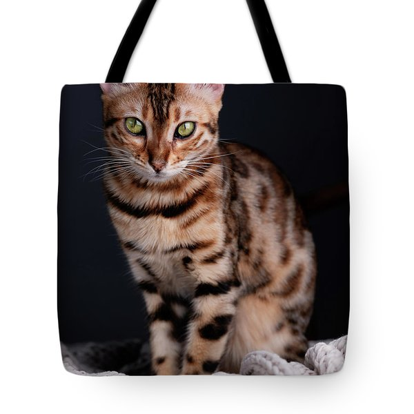 Bengal Cat Portrait Tote Bag