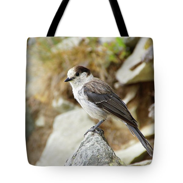 Camprobber - The Gray Jay Tote Bag