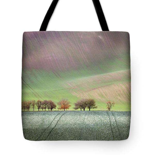 Autumn In South Moravia 3 Tote Bag