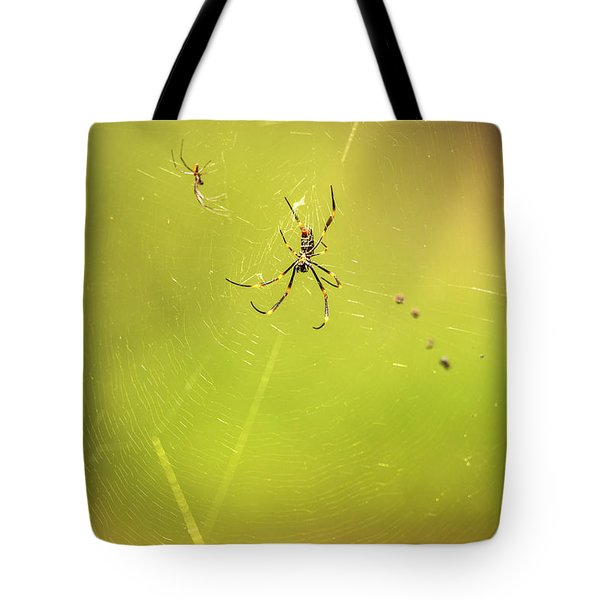 Tote Bag featuring the photograph Golden Orb Spider. by Rob D Imagery