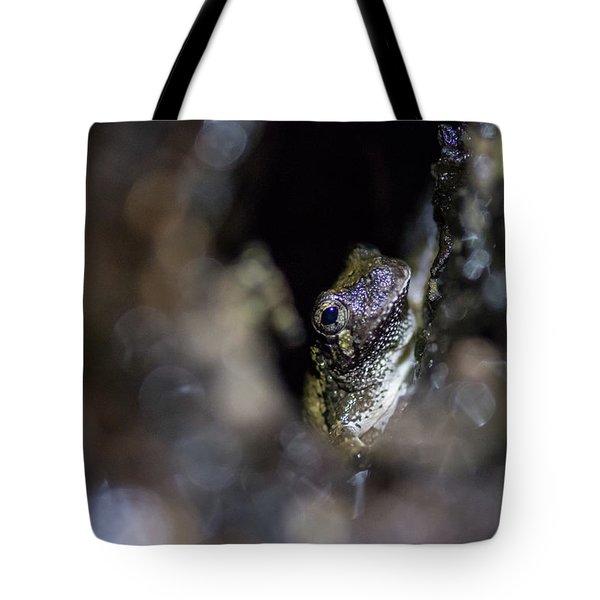 Grey Tree Frog Tote Bag